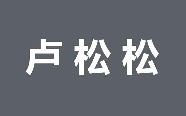 知名站长卢松松自媒体账号收入